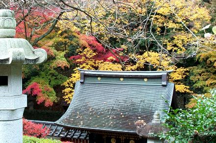 Autumn leaves at Masamune Date's tomb